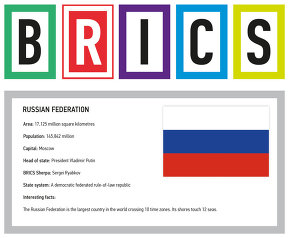 About BRICS countries