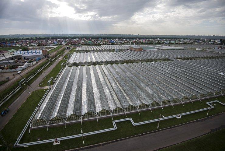Prior to SCO and BRICS summits in Ufa. Agro-industrial complex in Bashkortostan