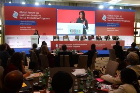 Global Forum on Implementation of Social Protection Programmes for Food Security and Nutrition: Towards Partnership for Development