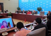 Meeting of the BRICS Senior Officials Responsible for International Development Assistance